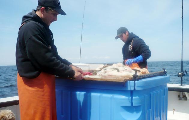 Le pêcheur Dave Carraro (G) sur son bateau le 29 avril 2013 [Fabienne Faur / AFP]