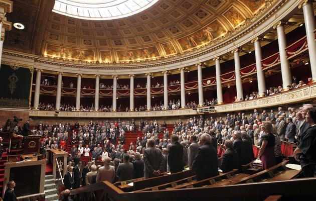 Les députés dans l'hémicycle de l'Assemblée nationale [Patrick Kovarik / AFP/Archives]