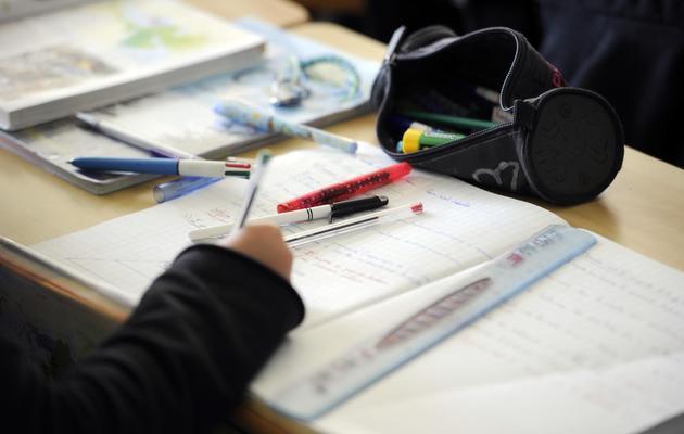Un élève au collège [Damien Meyer / AFP/Archives]