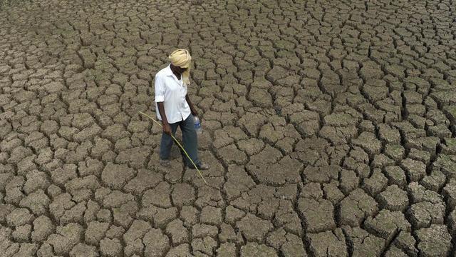 Pour la majorité des sondés (36 %), l'effondrement pourrait être provoqué par le réchauffement climatique.