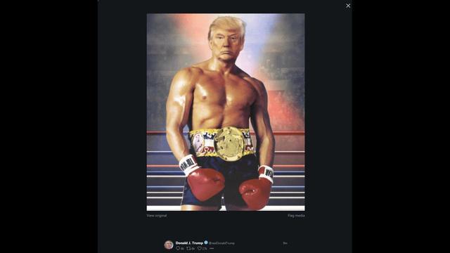 Le montage du président n'est pas passé inaperçu sur Twitter.
