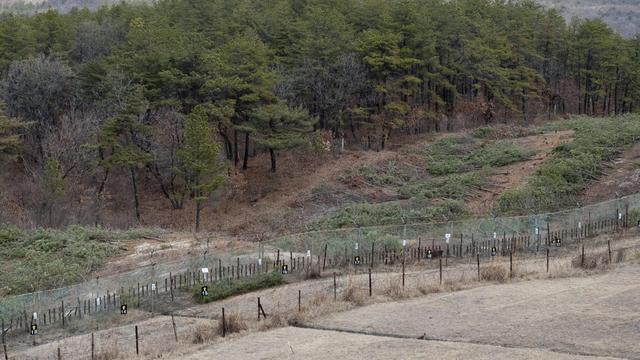 La zone sauvage située sur la frontière intercoréenne, no man's land abritant de nombreuses espèces animales et végétales, souvent rares et endémiques, est menacée par le développement économique et les perspectives de paix - encore lointaines - sur la péninsule. [AFP]