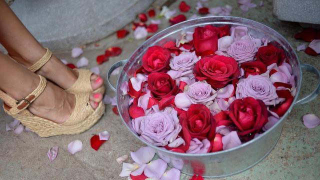 Une bassine de roses aux pieds d'une femme [Natalia Kolesnikova / AFP/Archives]