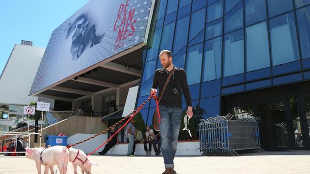"""Le réalisateur lithuanien Emilis Velyvis promène des cochons sur la croisette pour promouvoir son film """"Redirected"""" le 17 mai 2013 [Loic Venance / AFP]"""