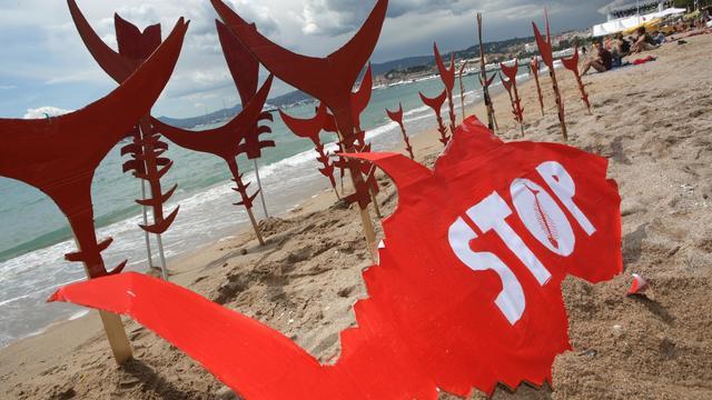Protestation contre la pêche au thon rouge, organisée par Greenpeace à Cannes le 15 mai 2010 [Loic Venance / AFP/Archives]