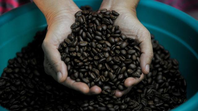 Des grains de café [Noel Celis / AFP/Archives]