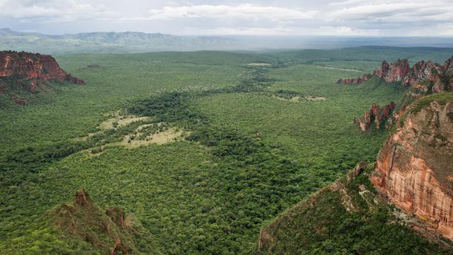 Un parc national au Brésil, le 30 janvier 2011 [Yasuyoshi Chiba / AFP/Archives]