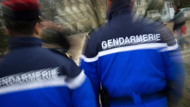 Deux gendarmes en janvier 2011 [Loic Venance / AFP]