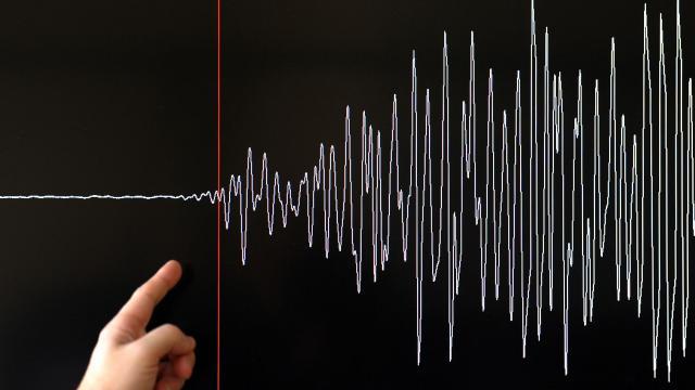 Graphique d'un séisme [Frederick Florin / AFP/Archives]