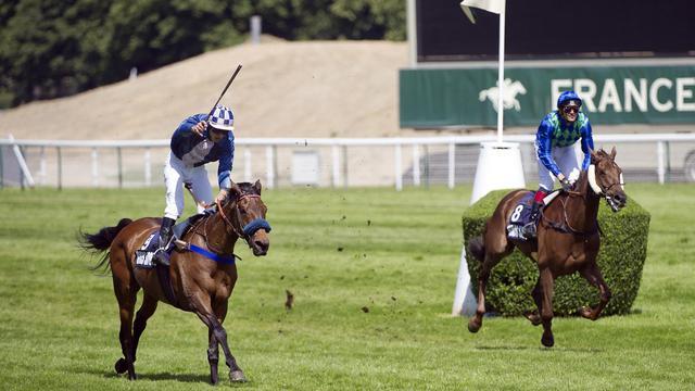 Le pur sang Mid Dancer (g) après sa victoire au Grand Steeple-Chase de Paris, le 29 mai 2011 [Bertrand Langlois / AFP/Archives]