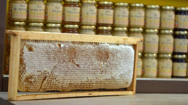 Des pots de miel [Eric Feferberg / AFP/Archives]
