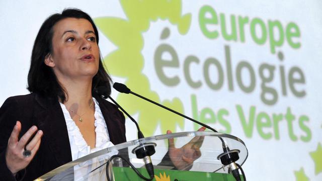 La ministre du Logement, Cécile Duflot, fait un discours au 9e congrès fédéral d'Europe Ecologie-Les Verts, le 17 novembre 2012 à Bobigny [Mehdi Fedouach / AFP/Archives]