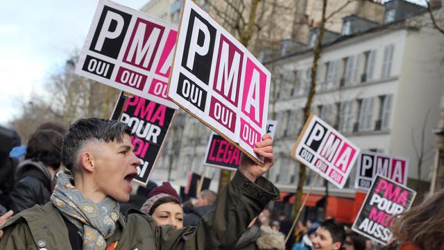 Des manifestants favorables au mariage des couples homosexuels, demandent également l'ouverture de la PMA aux couples de femmes, le 27 janvier 2013 à Paris