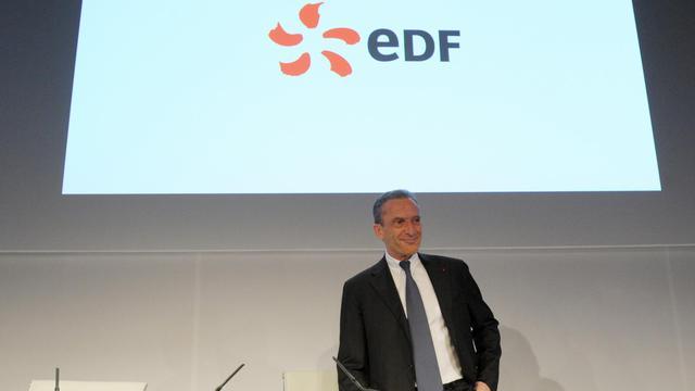 Le PDG du géant français de l'électricité, EDF, Henri Proglio, le 14 février 2013 à Paris [Eric Piermont / AFP/Archives]