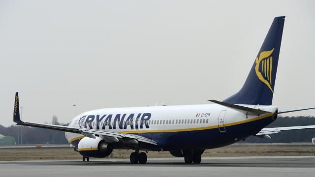 Un avion de la compagnie aérienne Ryanair [ / ANP/AFP/Archives]