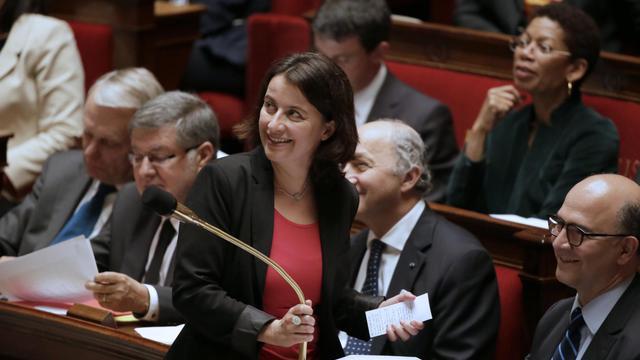 La ministre du Logement, Cécile Duflot, le 21 mai 2013 à l'Assemblée nationale à Paris [Kenzo Tribouillard / AFP]