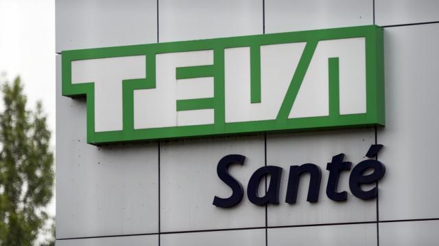 Le site de production de Teva à Sens (Yonne), le 10 juin 2013 [Fred Dufour / AFP]