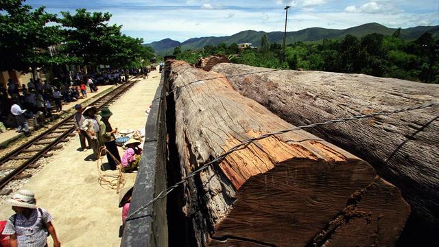 Un journaliste cambodgien qui militait contre le trafic de bois et avait écrit des articles mettant en cause des personnalités influentes du pays a été retrouvé mort dans le coffre de sa voiture, a indiqué la police mercredi. [AFP]