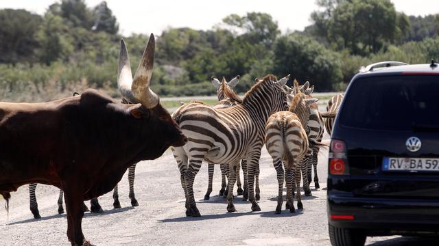 Réserve africaine