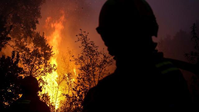 Des pompiers combattant l'incendie près de Monchique dans la région touristique de l'Algarve au Portugal regardent des arbres en flammes, le 8 oût 2018 [CARLOS COSTA / AFP]