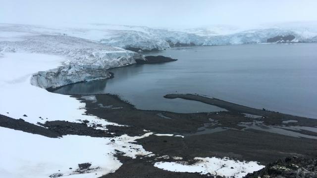 Le glacier Collins dont la masse a fondu depuis dix ans, le 2 février 2018 sur l'île du Roi-George, en Antarctique [Mathilde BELLENGER / AFP]
