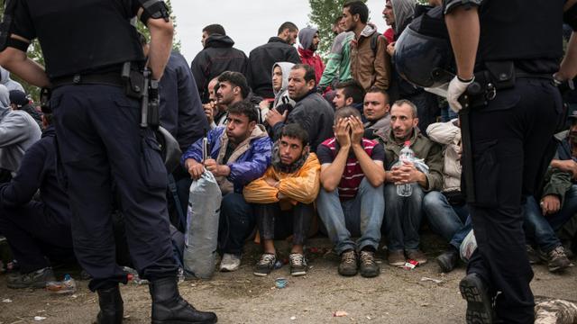 Des policiers croates devant des migrants et réfugiés qui attendent d'entrer dans le centre de transit d'Opatovac en Croatie, le 22 septembre 2015 [Federico Scoppa / AFP]