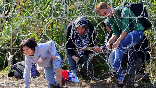 Un enfant de migrants traverse une clôture barbelée à Roszke à la frontière hongro-serbe le 28 août 2015 [ATTILA KISBENEDEK / AFP]