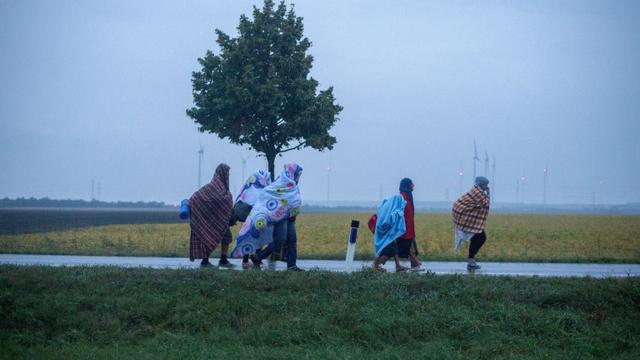 Des migrants marchent en direction de l'Autriche, près du village de Nickelsdorf à la frontière austro-hongroise, le 5 septembre 2015 [JOE KLAMAR / AFP/Archives]