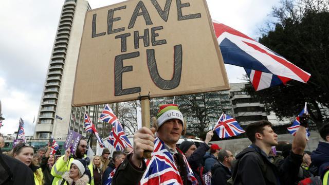 Manifestation pro-Brexit soutenue par l'Ukip (Parti pour l'indépendance du Royaume Uni) à Londres le 9 décembre 2018 [Adrian DENNIS / AFP]