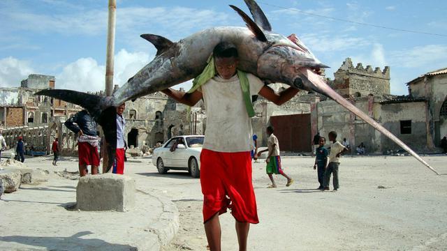 Un pêcheur porte un poisson sur le port de Mogadiscio en Somalie, le 8 novembre 2011 [Mohamed Abdiwahab / AFP/Archives]