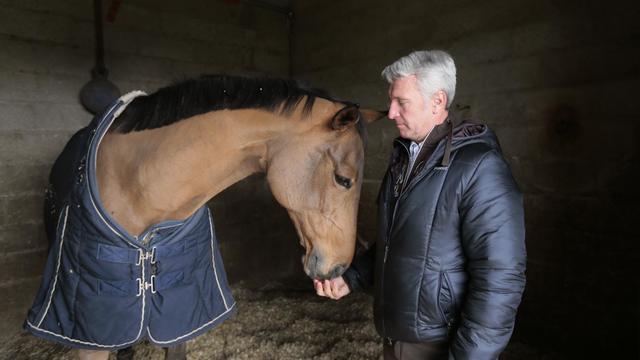 Le cavalier français Roger-Yves Bost et sa jument Myrtille Paulois dans son box le 25 novembre 2013 à Barbizon [Jacques Demarthon / AFP/Archives]