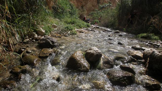 La source de Ein Fara dans la réserve naturelle de Nahal Prat du désert de Judée en Cisjordanie, le 19 avril 2014  [Hazem Bader / AFP]