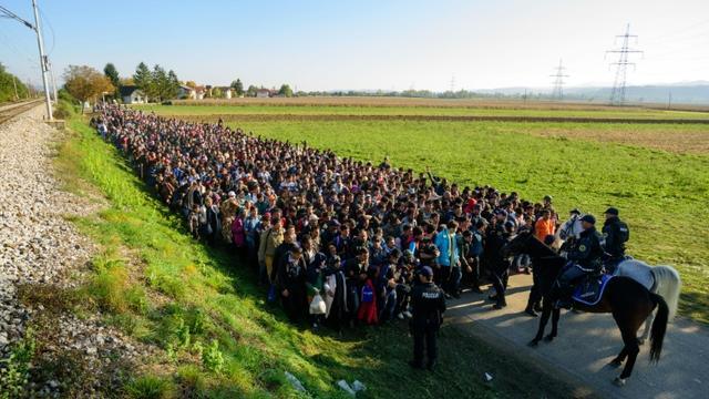 La police escorte des migrants et des réfugiés après avoir traversé la frontière entre la Croatie et la Slovénie, le 24 octobre 2015  [Jure Makovec / AFP/Archives]