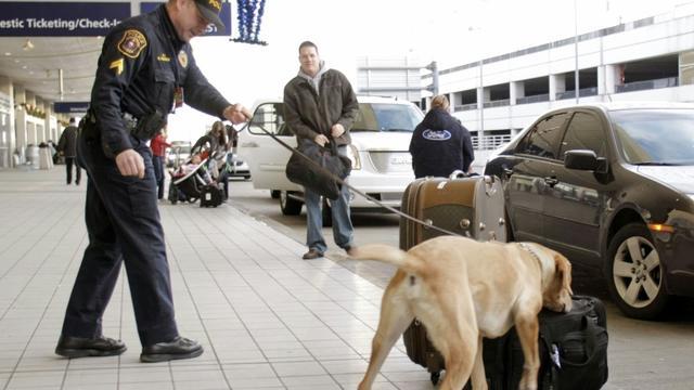 Un chien renifleur à l'aéroport de Detroit, le 26 décembre 2009 [BILL PUGLIANO / GETTY IMAGES NORTH AMERICA/AFP]