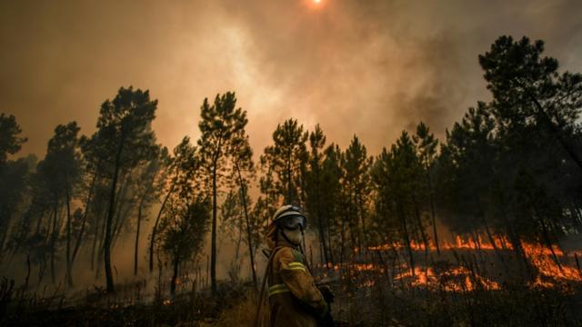 Un pompier lutte contre un incendie, le 22 juillet 2019 à Casais de Sao Bento, dans le centre du Portugal [PATRICIA DE MELO MOREIRA / AFP]