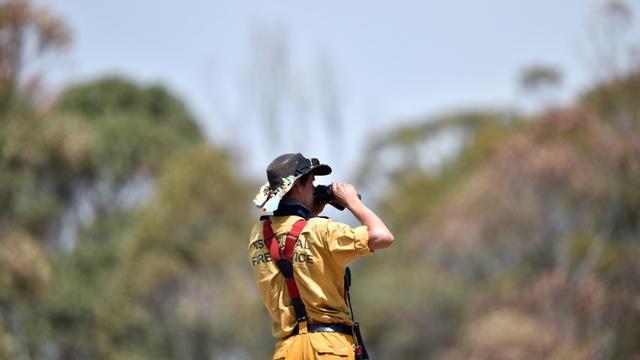 Un pompier surveille l'avancée des incendies dans la région de Penrose, en Nouvelles-Galles du Sud, en Australie, le 10 janvier 2020 [SAEED KHAN / AFP]