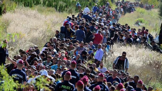 Des migrants encadrés par la police hongroise traversent la campagne le 21 septembre 2015 après avoir franchi la frontière entre la Croatie et la Hongrie près de Zakany [ATTILA KISBENEDEK / AFP]