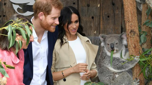 Le prince Harry et son épouse Meghan au zoo de Taronga, le 16 octobre 2018 à Sydney [DEAN LEWINS / AFP]