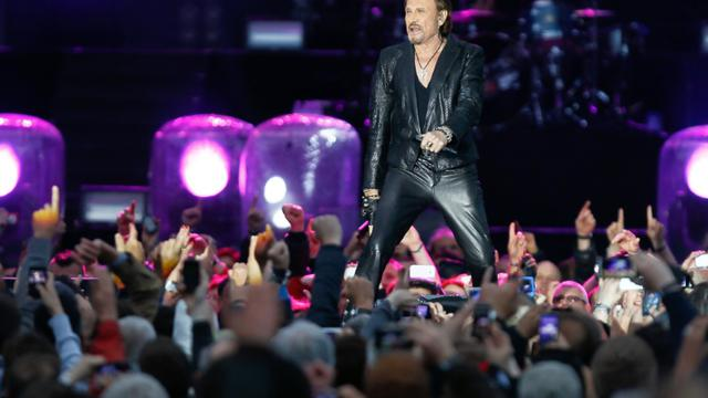 Le chanteur Johnny Hallyday lors d'un concert à Namur, le 23 juin 2013 [Bruno Fahy / BELGA/AFP/Archives]