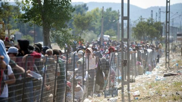 Des migrants attendent à la frontière grecque pour passer en Macédoine près du village de Gevgelija, le 3 septembre 2015 [Robert Atanasovski / AFP]