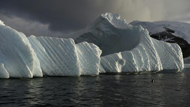Un icerberg en Antarctique le 4 mars 2016  [EITAN ABRAMOVICH / AFP/Archives]