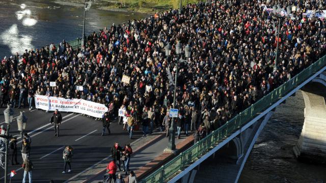 Des milliers de manifestants à Toulouse le 21 novembre 2015 [REMY GABALDA / AFP]
