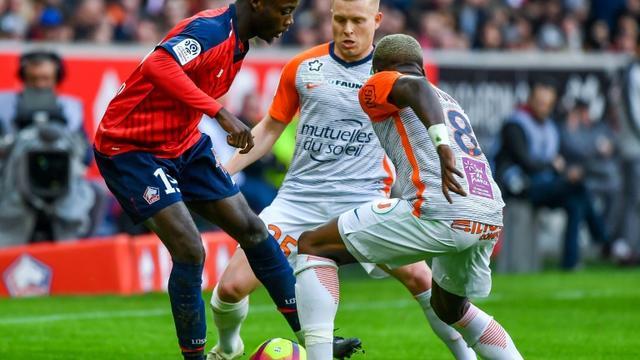 L'attaquant de Lille Nicolas Pépé (g) contre Montpellier, le 17 février 2019 au stade Pierre-Mauroy, à Villeneuve-d'Ascq [PHILIPPE HUGUEN / AFP]