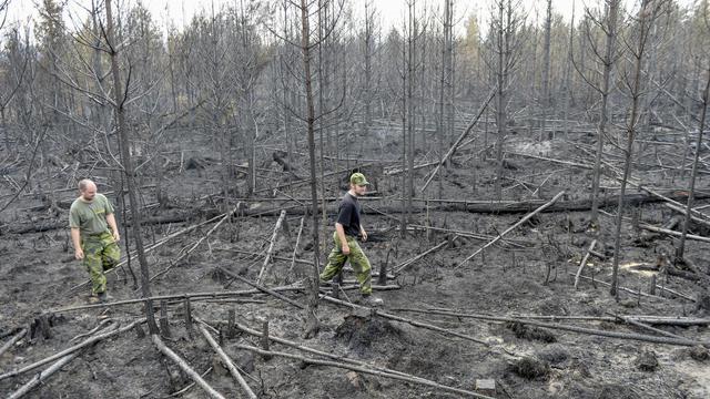 Les feux de forêt ont fait rage dans le centre de la Suède, près de Seglingsberg le 6 août 2014 [Maja Suslin / Tt News Agency/AFP]