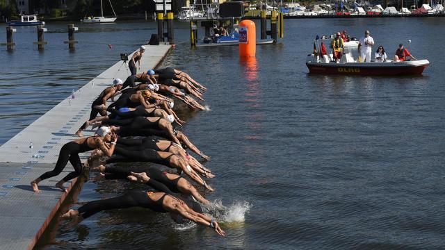 Les nageuses s'élancent pour le 10 km en eau libre lors des Championnats d'Europe, le 13 août 2014 à Berlin [Tobias Schwarz / AFP]