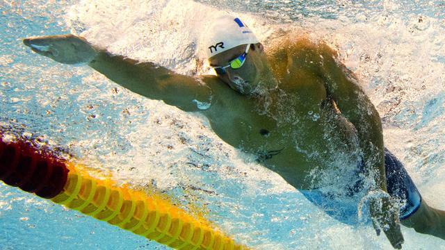Florent Manaudou lors du 50 m libre le 23 août à Berlin  [Damien Meyer / AFP]
