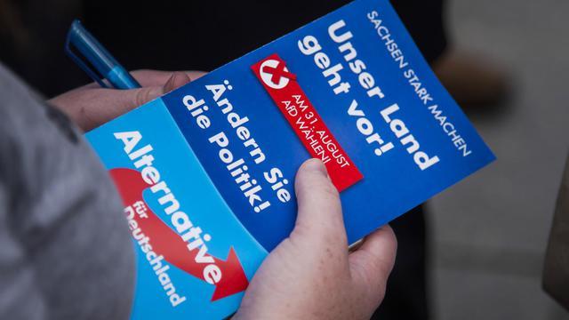 Un fascicule détaillant le programme du parti anti-euro allemand Alternative für Deutschland [Odd Andersen / AFP]