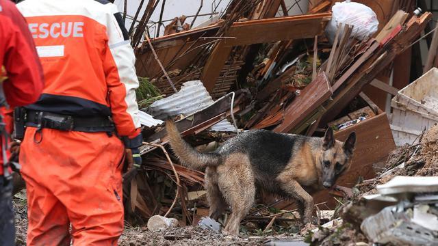 Un sauveteur et son chien au milieu des décombres le 26 août 2014 à Hiroshima [JIJI PRESS / Jiji Press/AFP]