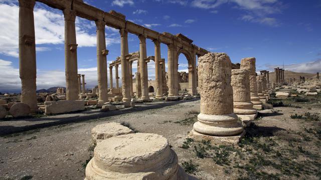 Une partie de l'ancienne oasis de Palmyre, à 215 km au nord-est de Damas, désertée par les touristes, le 14 mars 2014 [Joseph Eid / AFP]