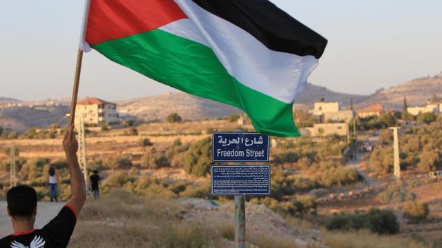 Un Palestinien brandit le drapeau national le 31 juillet 2014 à Billin dans la Bande de Gaza [Abbas Momani / AFP]